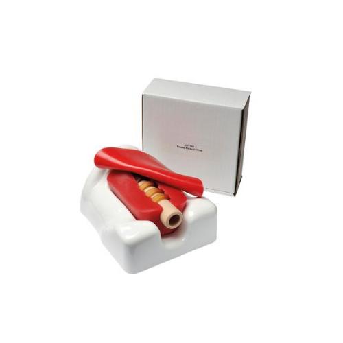 东阳德国3B Scientific®微型气管切开术模拟器,单个包装