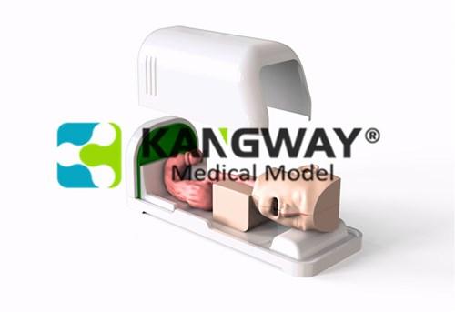 """江苏""""万博手机手机登录app医疗""""胃肠消化内镜微创介入手术训练模拟器"""