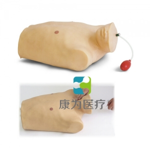 """""""康为医疗""""中心静脉穿刺插管术训练仿真模型"""