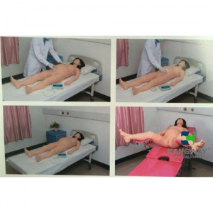 """""""万博手机手机登录app医疗""""孕妇产科检查-高仿真模拟训练系统 V1.0"""