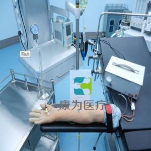 """""""万博手机手机登录app医疗""""高级电动脉搏式手臂动脉及静脉穿刺练习模型"""