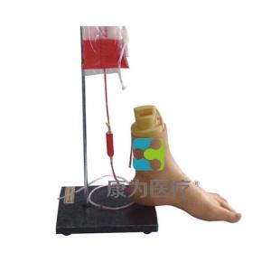 """""""万博手机手机登录app医疗""""下肢足部静脉注射仿真模型"""