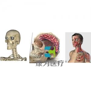 """""""万博手机手机登录app医疗""""3D三维人体解剖系统"""