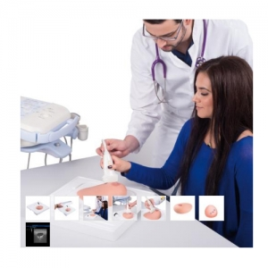 德国3B Scientific®SONOtrain™ 带囊肿的超声检查乳房模型