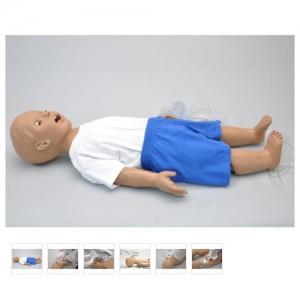 德国3B Scientific®婴儿CPR模型