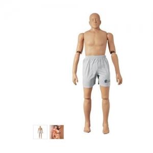 德国3B Scientific®救助模型,167cm/48kg