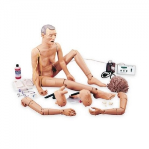 德国3B Scientific®高级 GERi™ 人体模型