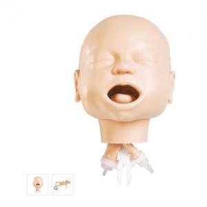 德国3B Scientific®婴儿气道管理训练模型
