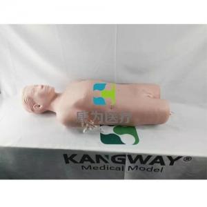 胆囊切除手术训练模型