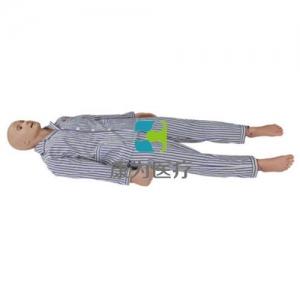 临床肾脏穿刺训练模拟人,肾脏穿刺模型