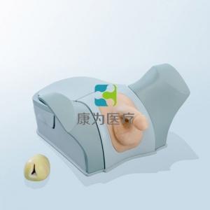 前列腺电切(生物仿真材料)模拟训练系统