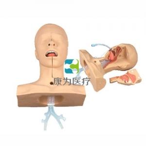 高级吸痰操作练习模型(可用真实负压吸痰器进行吸痰操作)
