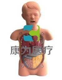 儿童透明洗胃训练模型,儿童洗胃操作模型,小儿透明洗胃模型