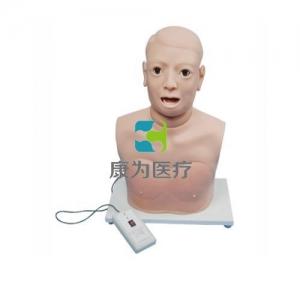 高级咽喉检查模型(带电子检测) 咽喉检查操作模型