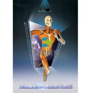 系统解剖3D虚拟教学系统