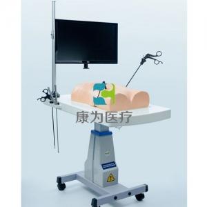 仿人体腹腔镜操作训练仪