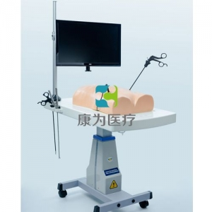 腹腔镜(生物仿真材料)模拟训练系统