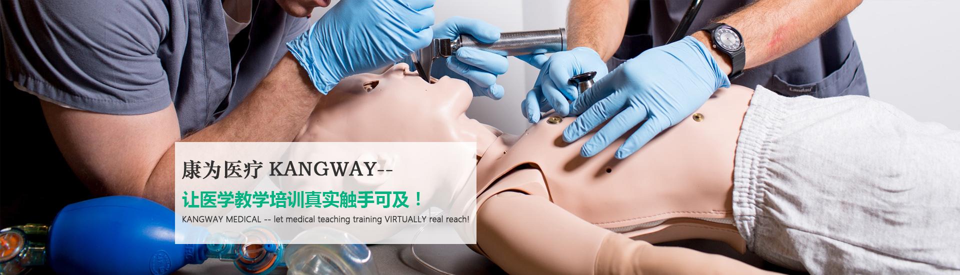 安徽医疗模型