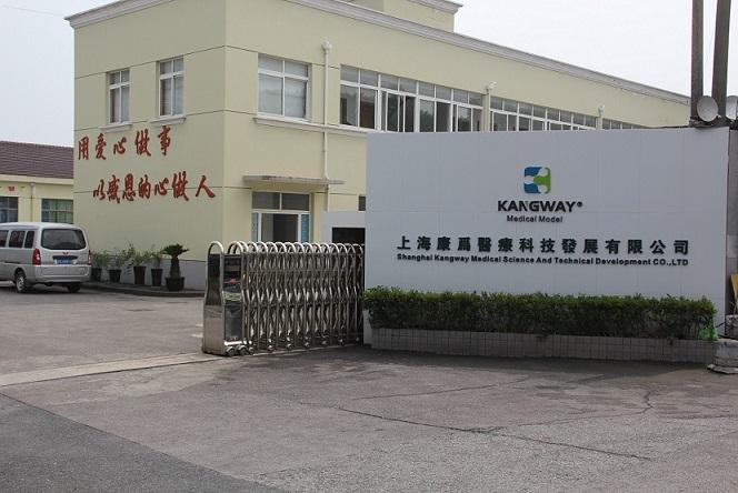 万博手机手机登录app医疗人体模型浦东临港工业园