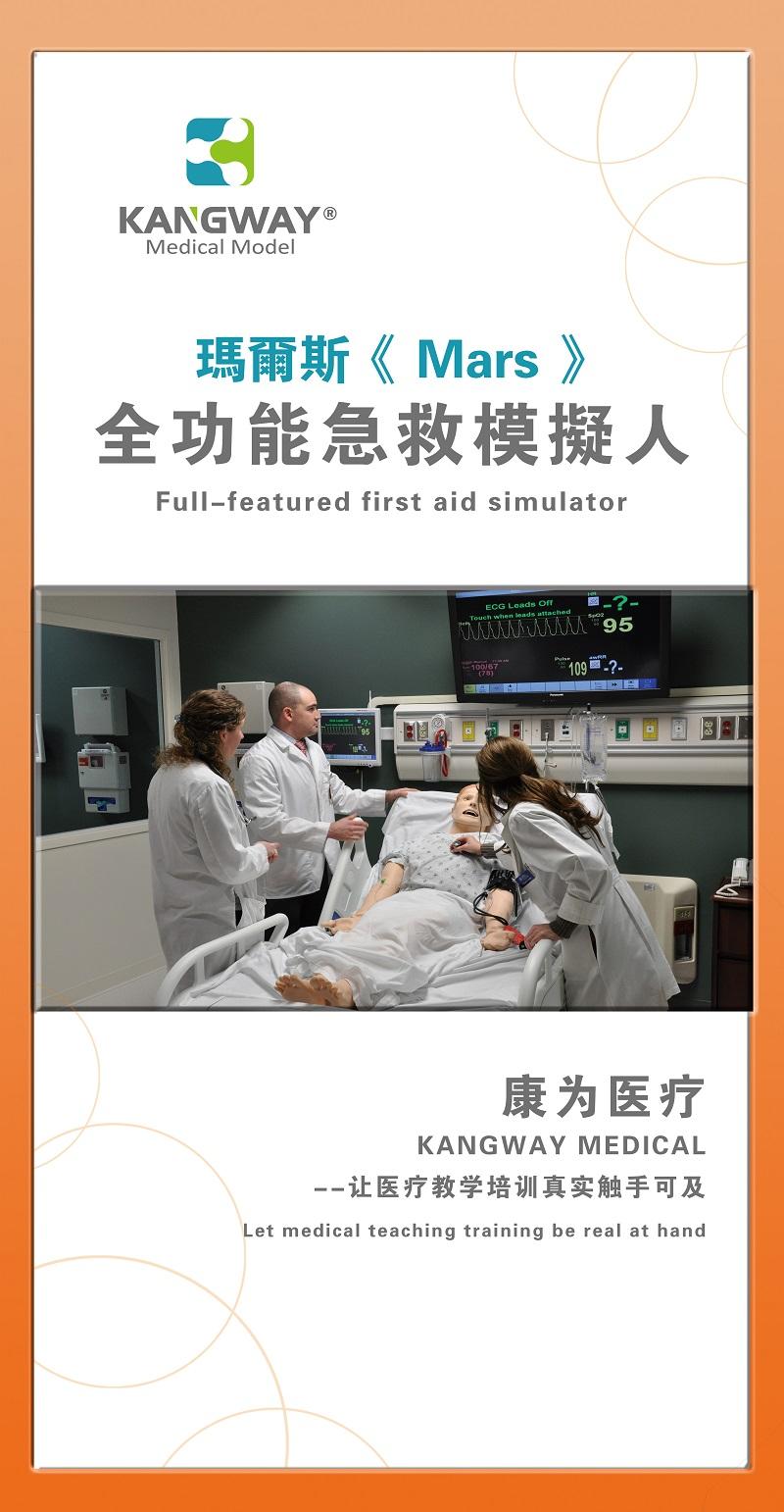 安徽医学人体模型